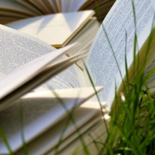 Boeken in gras portfolio Seriously design