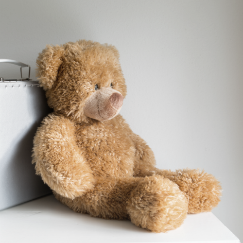 Teddybeer portfolio Seriously design Brabbels & Babbels